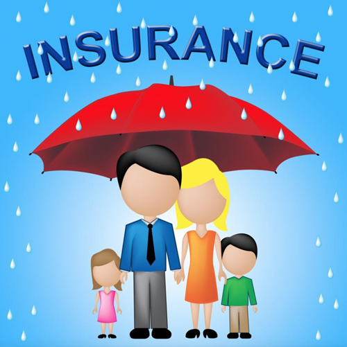 Family-Insurance-Shows-Household-Policy-And-Cover-from-Freerange.png